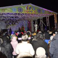 В парке им. Дружба состоялся концерт, посвящённый встрече Нового года.