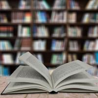 27 мая «Общероссийский день библиотек»